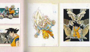 Planches Dragon Ball Jump Ten