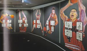 Salle Slam Dunk Jump Ten